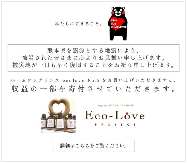 エコラブ No.2