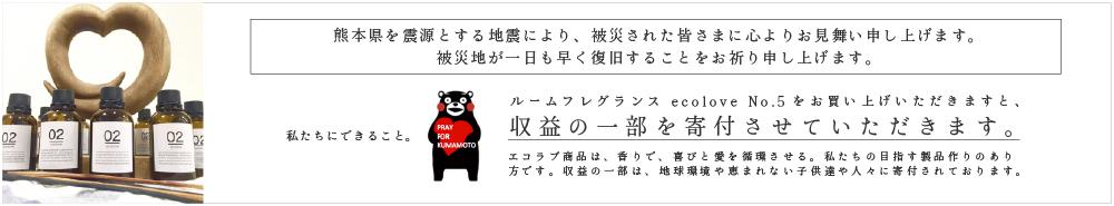 エコラブ No.4