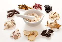 Various Chinese herbal medicine